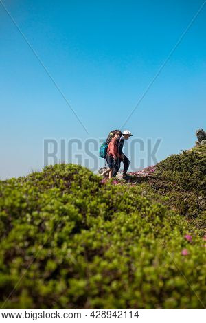 Two Brothers On A Hike In The Mountains, Children With Backpacks Are Walking Along A Mountain Trail,