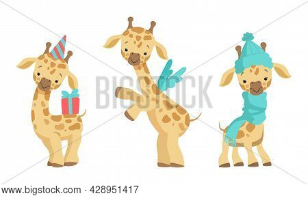 Cute Spotted Baby Giraffe With Long Neck Wearing Scarf And Carrying Gift Box Vector Set