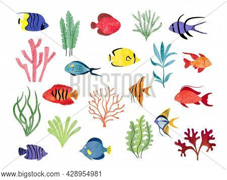 Tropical Fish And Seaweeds Isolated On White. Big Vector Aquarium Set Of Watercolor Different Fish A