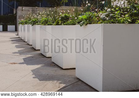 White Square Flower Planters In A Row