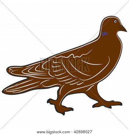 Pigeons (1-re)2-3.eps