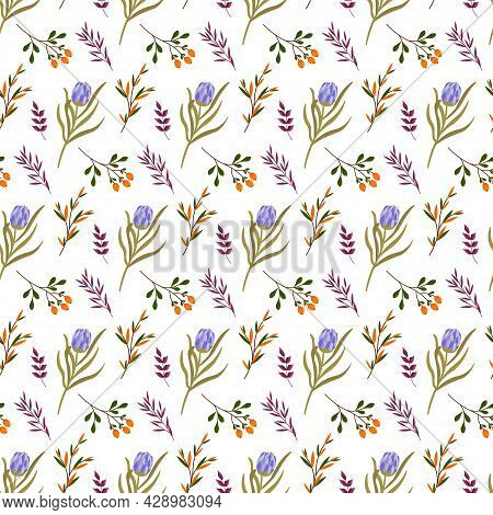 Protea Pattern With Purple Leaves And Orange Berries. Floral Vector Pattern On White Background. For