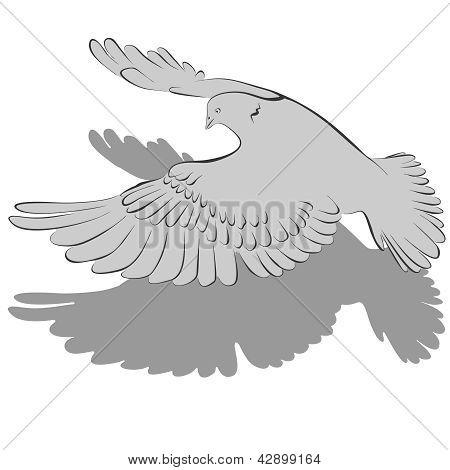 Pigeons (1-re)2-6.eps