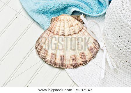 Sunhat And Seashell