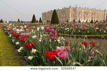 Versailles Gardens And Place Angle