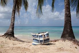 Beach Bag Ang Palm Trees