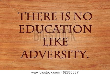 There is no education like adversity - quote by Disraeli on wooden red oak background