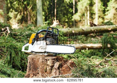 gasoline chainsaw on cut wood in forest