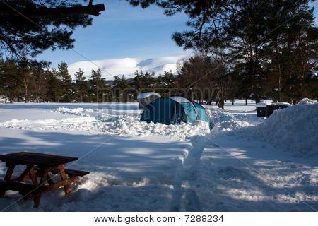 Winter Views At Aviemore