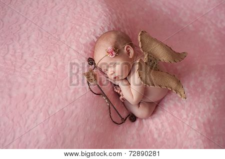 Newborn Baby Girl Wearing Cupid Wings
