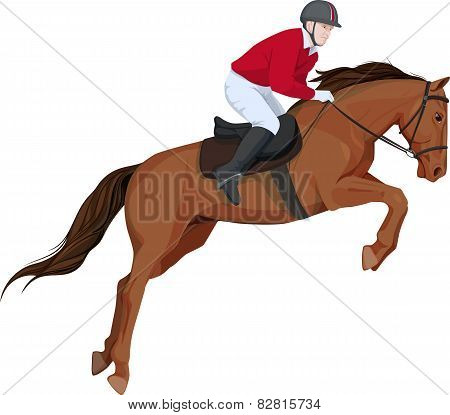 isolated image of jumping horse and jokey, a side look