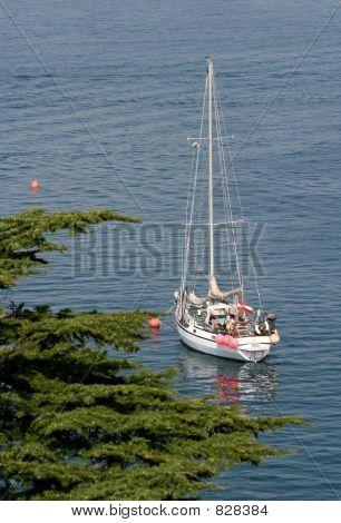 Beautiful Sailboat In Morning Sunlight