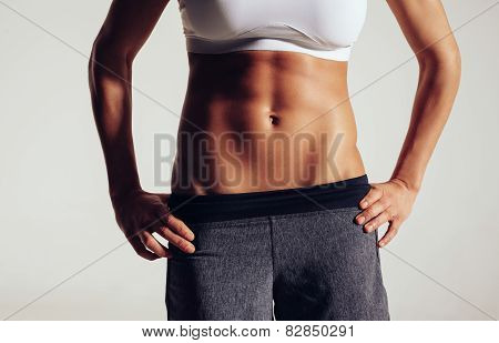 Torso Of A Female Fitness Model
