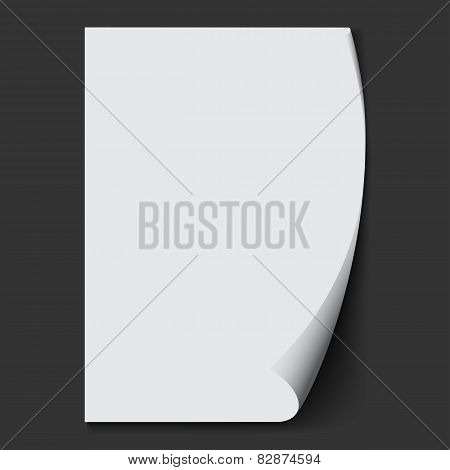 White Sheet Of Paper. Vector Background