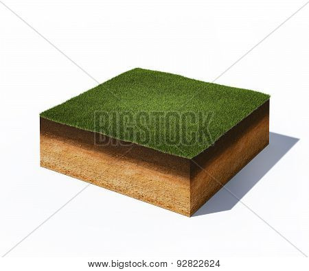 Isometric Cross Section Of Ground With Grass