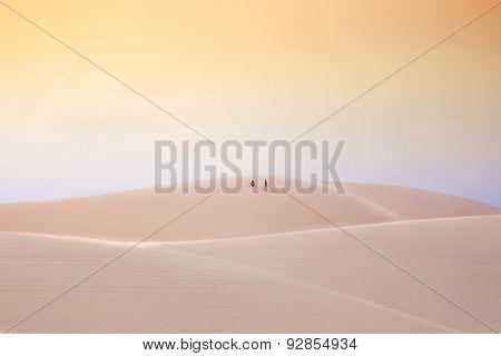 In the desert, White Sand Dunes, Mui Ne, Vietnam