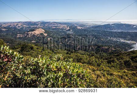The Bay, Marin County