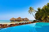 Pool on tropical Maldives island - nature travel background poster