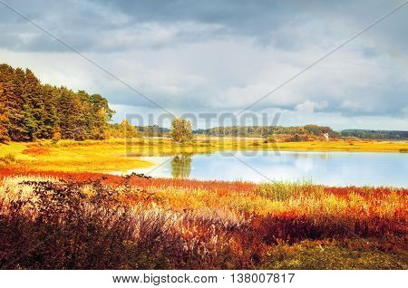 Autumn sunny landscape -Soroti river and autumn forest trees in Pskov region Russia - autumn natural landscape of autumn forest nature lit by bright autumn sunlight. Soft filter applied poster