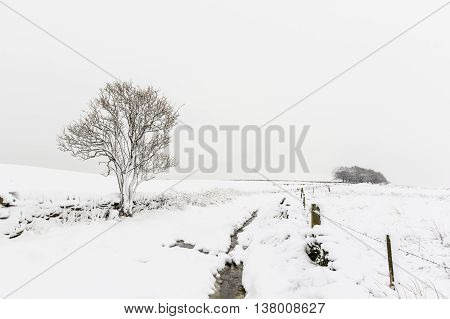 Countryside with snow in winter Yorkshire UK