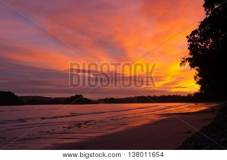 The sunset over the sea and trees with yellow and orange sky