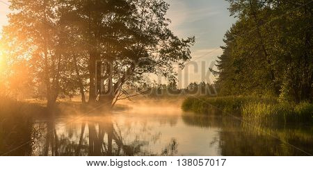 Bright summer landscape, misty morning on the lake