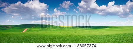 Green field and blue sky, bright colorful summer sky