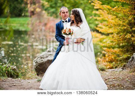 Wedding Couple Background Autumn Landscape Of Yellow Leaves