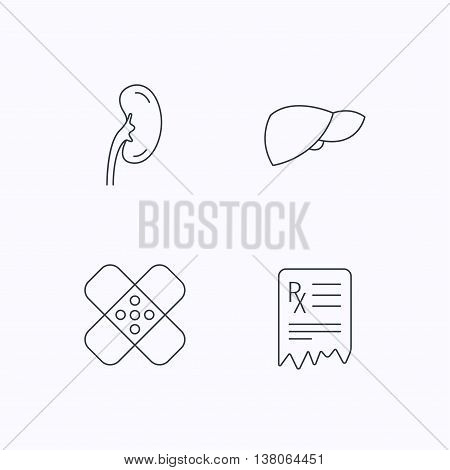 Liver, medical plaster and prescription icons. Kidney linear sign. Flat linear icons on white background. Vector