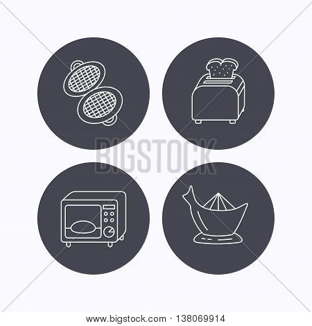 Microwave oven, toaster and juicer icons. Waffle-iron linear sign. Flat icons in circle buttons on white background. Vector