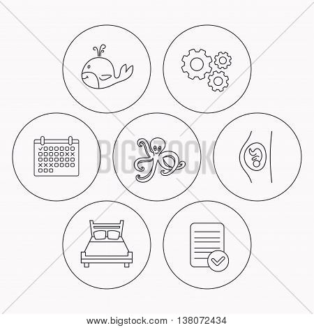 Whale, octopus and double bed  icons. Pregnancy linear sign. Check file, calendar and cogwheel icons. Vector