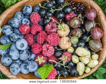 Ripe berries in the wooden bowl over green grass.