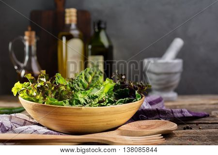 Fresh green salad mix. Culinary background with fresh salad herbs such as chard, lettuce, beet leaves