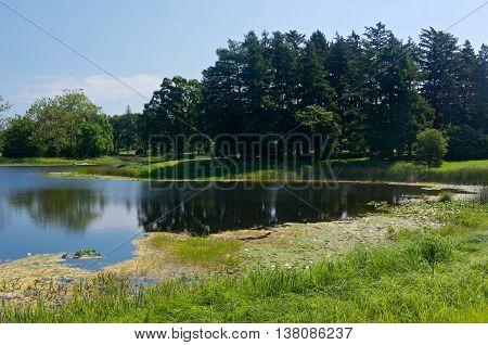 landscape of marshes lake and woodlands at arboretum in lisle illinois
