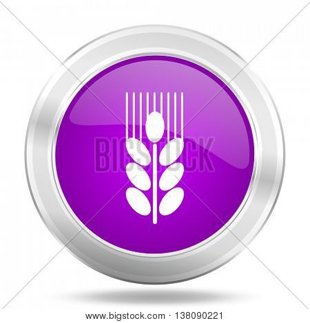 grain round glossy pink silver metallic icon, modern design web element