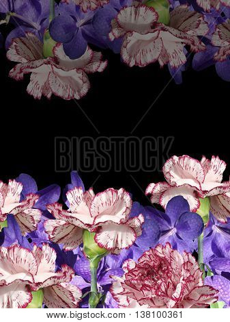 Delicate floral background with orchids and carnations poster