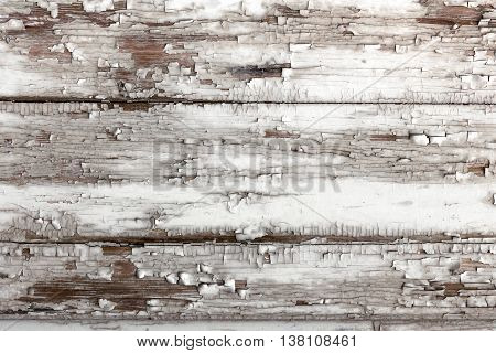 Background of old board with peeling white paint