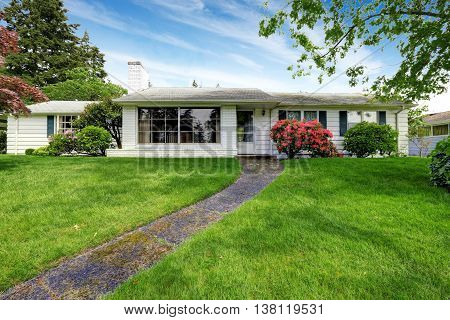 American White Rambler With Green Grass And Flower Bed.