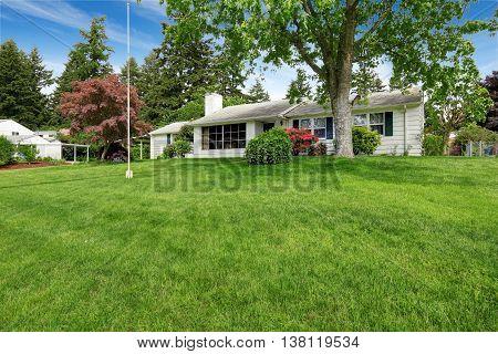 Grass Filled Front Garden Of American Classic Rambler.