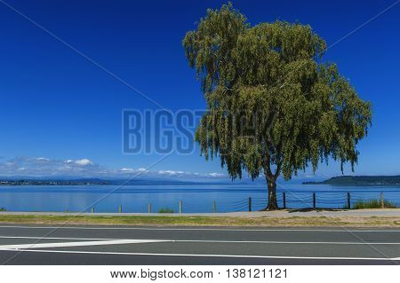 Lake Taupo is the largest lake by surface area in New Zealand and the second largest freshwater lake by surface area in geopolitical Oceania.