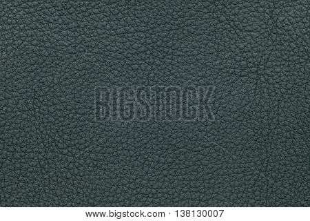 Dark green leather texture background. Closeup photo. Reptile skin. The skin of a crocodile or a snake