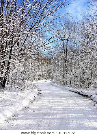Frozen Winter Road