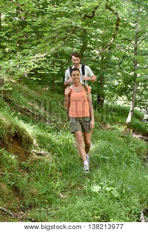 Couple rambling in forest path
