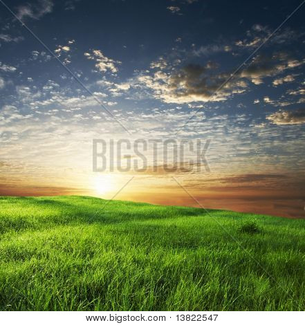 green grassland on sunset