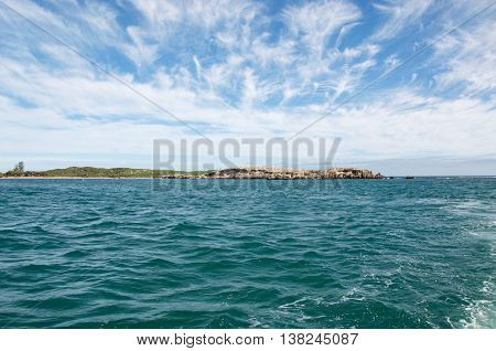 View of Penguin Island with nesting wildlife, limestone and vegetated dunes with the turquoise Indian Ocean waters under a blue sky with clouds in Rockingham, Western Australia.
