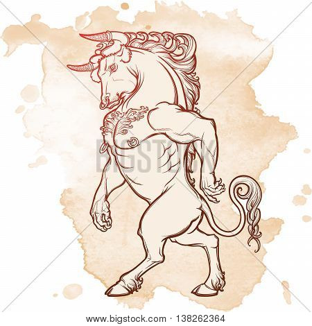 Minotaur ancient Greek mythical creature. Heraldic supporter. Sketch on grunge background. EPS10 vector illustration.