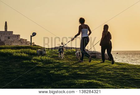 Tel Aviv Israel - October 21 2015. Two women walks with dogs in small park. View with Jaffa also called Japho or Joppa former port city now part of Tel Aviv on background