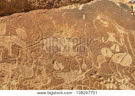 fragment of rock carvings in Twyfelfontein approved as Namibia's first UNESCO World Heritage Site in the Kunene Region of north-western Namibia. The carvings represent animals such as rhinoceroses elephants ostriches as well as depictions of human and ani