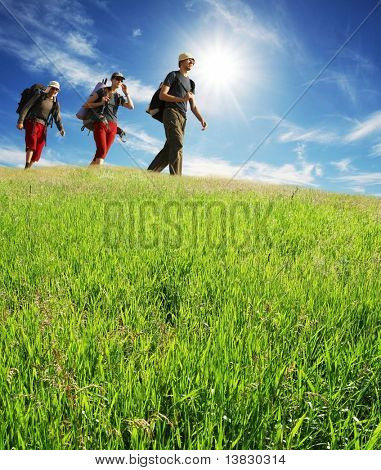 Hikers on green meadow