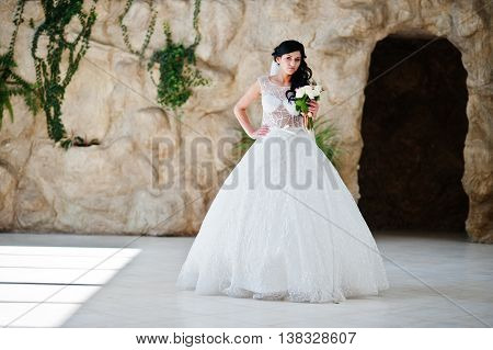 Temptation Model Brunette Bride At Exciting Wedding Dress